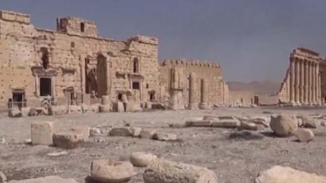 ارتش سوریه از پیشرفت برای پس گیری شهر پالیمرا خبر می دهد
