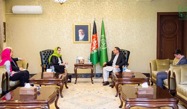 دیدار صلاح الدین ربانی با فرستاده ویژه دبیرکل سازمان ملل متحد برای افغانستان