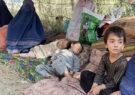 اعلام سازمان غذایی جهان از ناامنی شدید غذایی در افغانستان